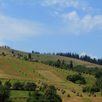 Mutând cu talpa dealul